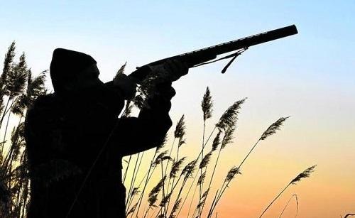 Coto caza en León (España)