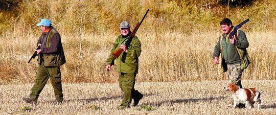 Coto de caza en Burgos
