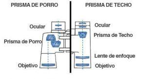 Estructura Óptica