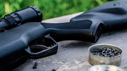Escopeta de Perdigones ¿Cuál es la mejor y a qué precio?